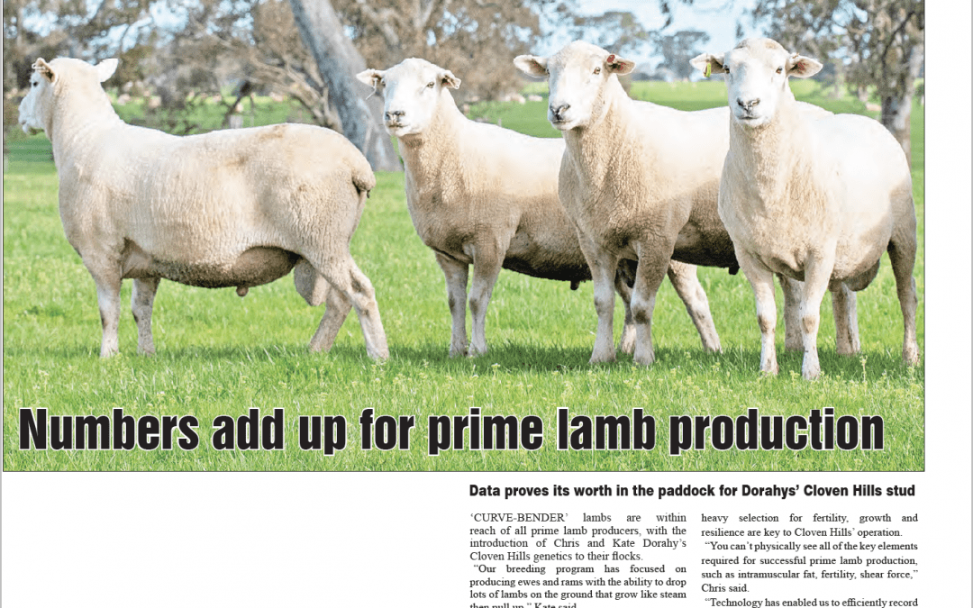 Western District Farmer, August 2020 (The Spectator Group)